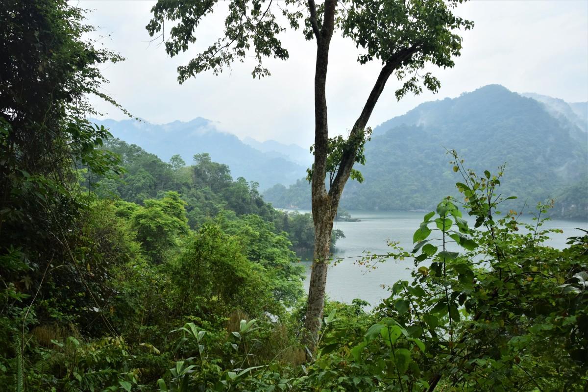Spazieren durch's Paradies: Im BaBể-Nationalpark